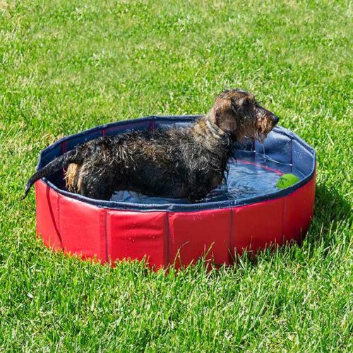 idee-cadeau-maman-piscine-animaux
